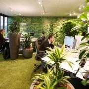 ایده طراحی green wall
